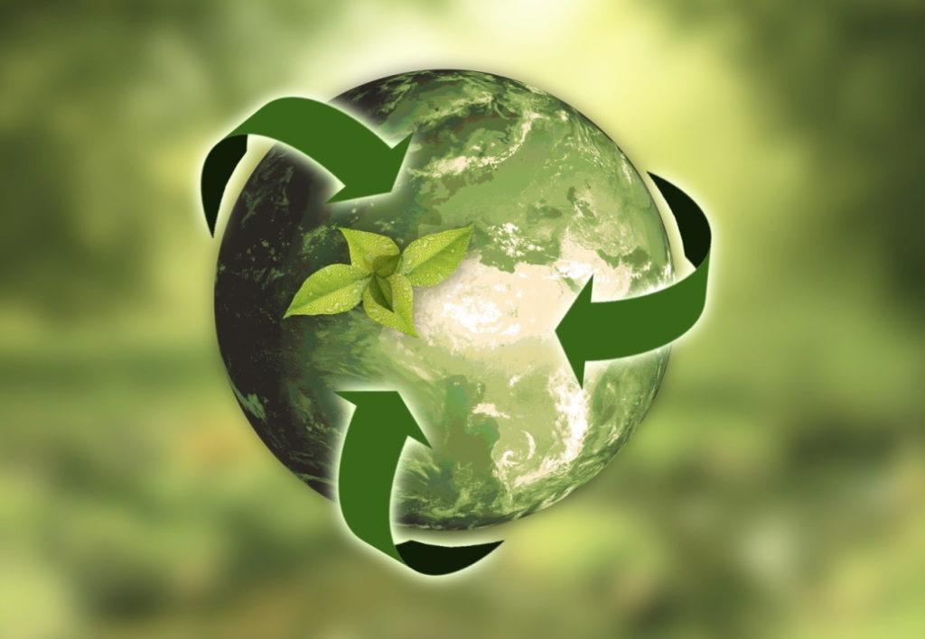 Transición Ecológica y Economía Circular